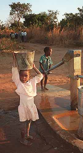 Malawi Africa Water Hole
