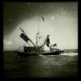 Louisiana Coast Recovery