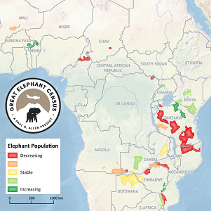 Prince William Declining Elephant Numbers