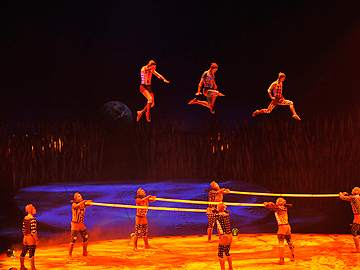 Cirque Du Soleil TOTEM That's the skinniest trampoline I've ever seen...