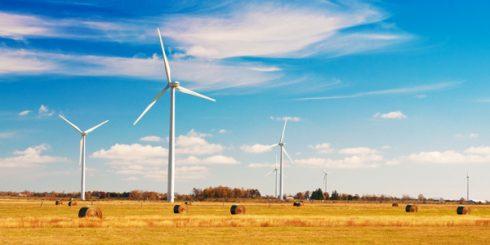 Windfarm in Ontario