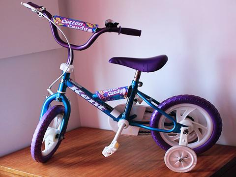 training-wheels-bike