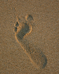 Tobago Footprint in sand
