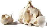 garlic immune system booster