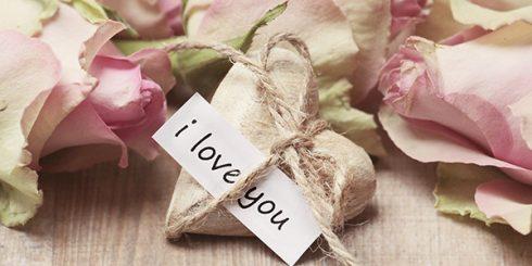 Roses, Gift, Romance, Love
