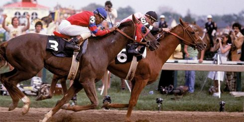 Affirmed and Alydar in the Belmont Stakes at Belmont Park - 1978